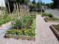 7 objets connectés pour vos plantes et jardin